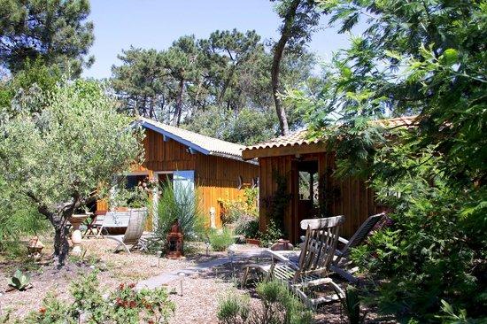 Chez Annie : Jardin