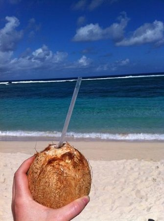 Anita's Beach Bungalows: fresh young coconut water for $1 at Anita's beach fales
