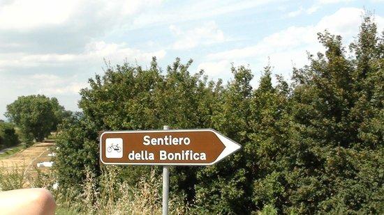 Roma Bike Tour: sentiero che collega Chiusi Chianciano ed Arezzo