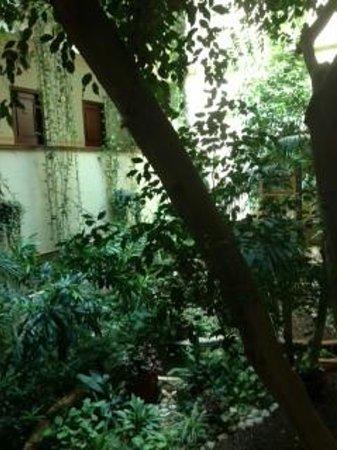 Hotel Mitzpe Hayamim: The patio