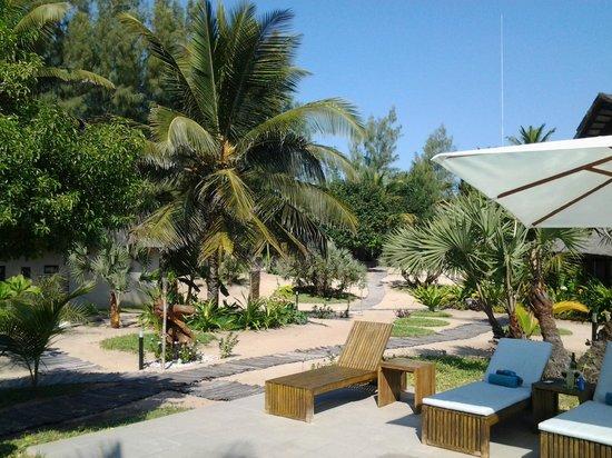 Barra Beach Club: Pool area