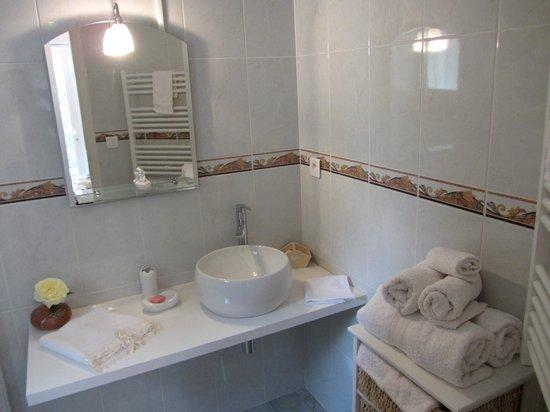 La Villa de l'Olivier: Sabine bathroom