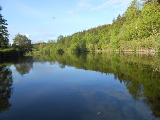 Larry's Barge - Day Tours: A beautiful  tranquil river