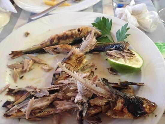 Theo's Seafood Restaurant Photo