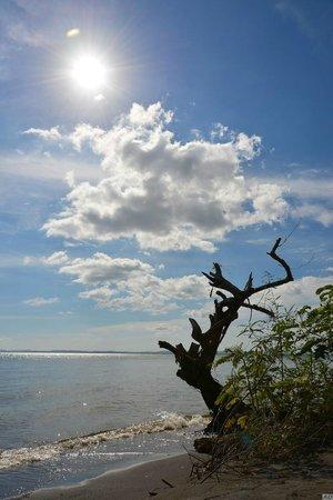 Finca Samaria : La plage