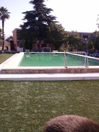 Hotel Europeo Benidorm: piscina del hotel