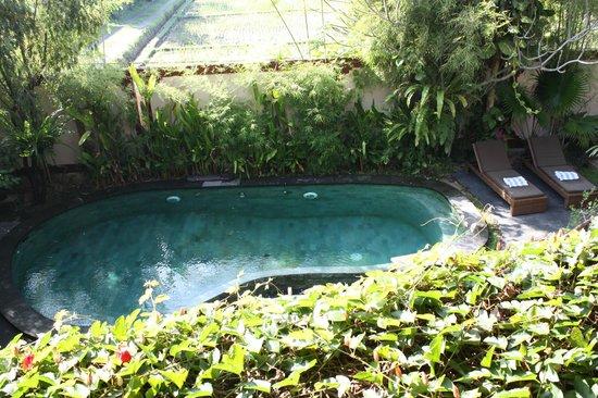 Junjungan Ubud Hotel and Spa: piscine