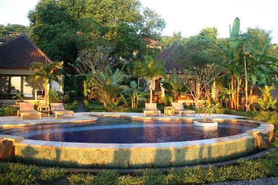 Bali Dream House: piscine