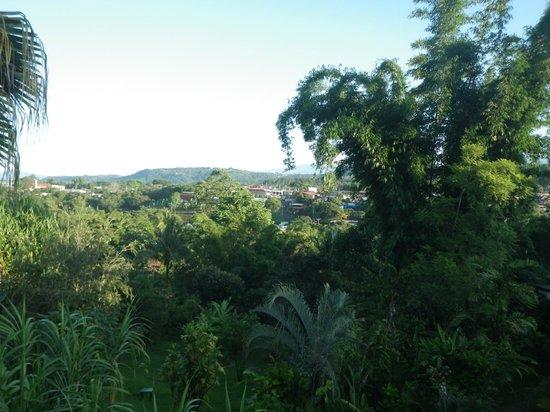 Pura Vida Hotel: View from Casita Volcano