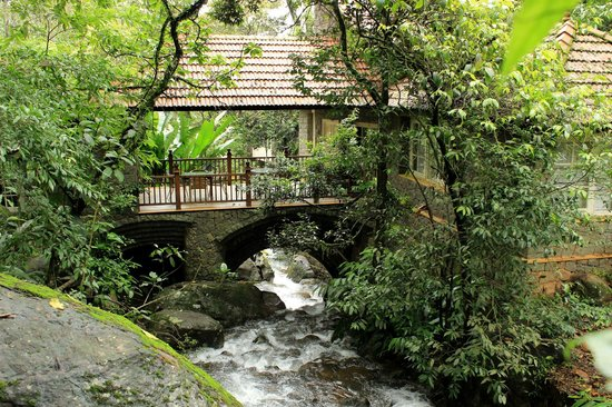 Mayapott Plantation Villa : view of the stream from dining area