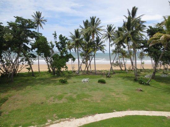 Castaways Resort & Spa Mission Beach: hotel tuin