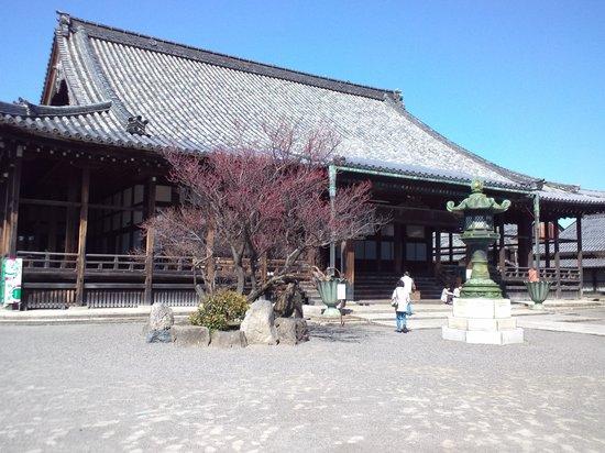 Daitsuji Temple: 本堂