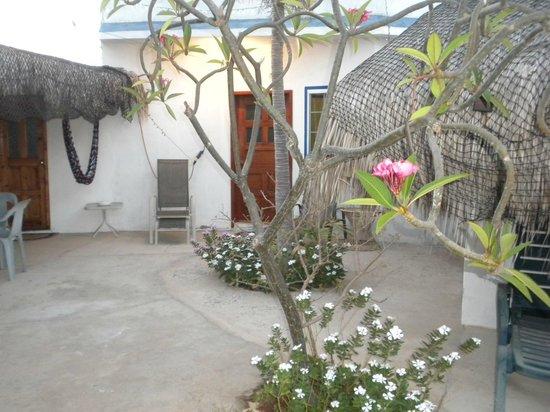 El Delfin Blanco: Our room.