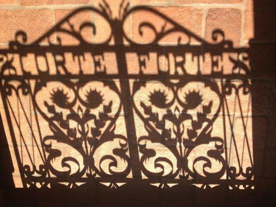 Azienda Agricola Corteforte: ombra