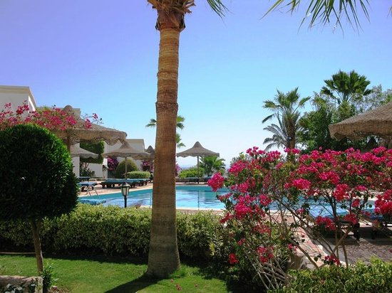 Club Reef Resort: Piscina davanti camera