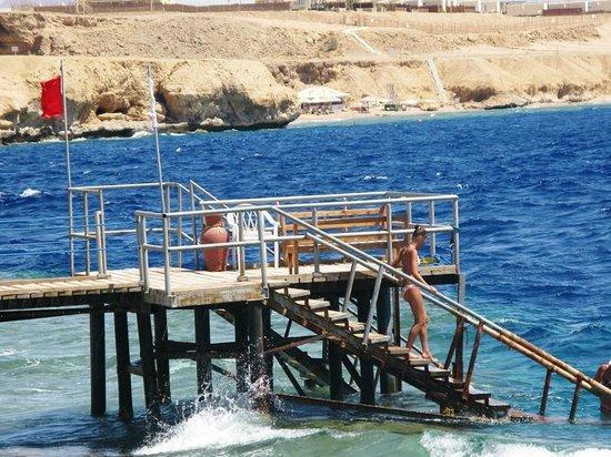 Club Reef Resort: Pontile