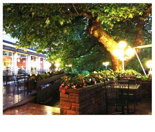 Waldhotel Grüner Baum: Am Abend