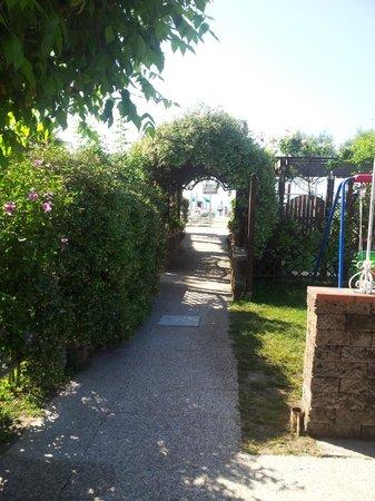 Hotel Vina del Mar Pineta: Viale per accedere alla spiaggia - a dx e sx rispettivamente angolo vasca-idro e zona relax