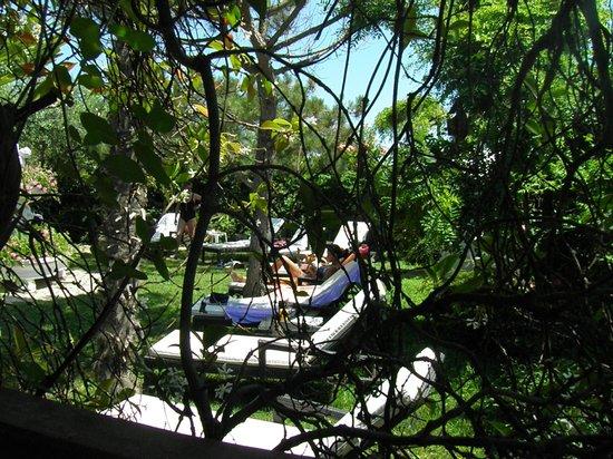 Hotel Vina del Mar Pineta: Angolo relax vicino alla piscina