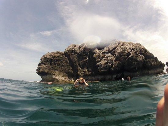 Searobin Dive Center : Second dive
