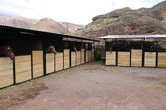 Hacienda del Chalan: Rancho El Chalan