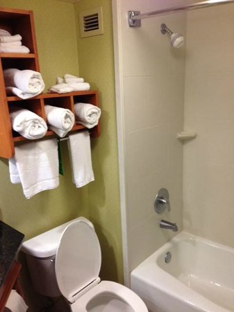 Hampton Inn Gatlinburg: Clean bathroom