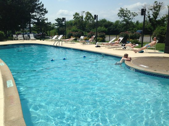 Renaissance St. Louis Airport Hotel: Härlig pool