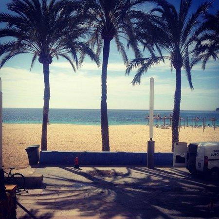 TRH Magaluf: Beautiful beach