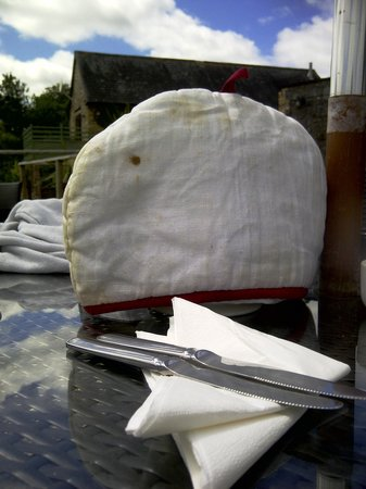 Sampsons Farm: No plates and grubby tea cosy