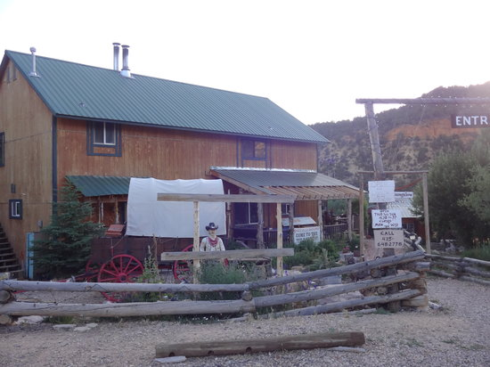 Wild Boar Bistro: The Buffalo Bistro out front, very quaint place and very relaxing!