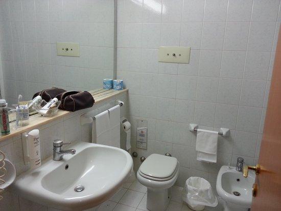 Hotel Il Gelso Bianco: il bagno molto ampio