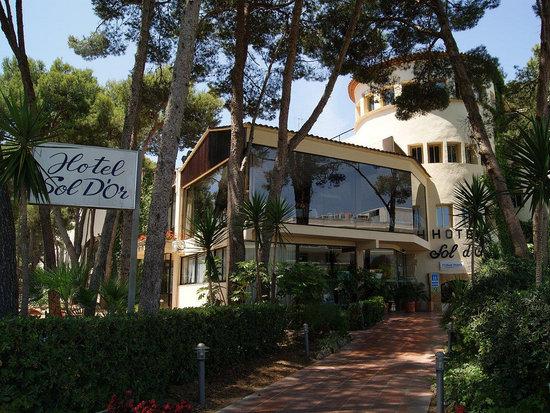 Best Sol Dor: Entrada Hotel Best Sol d'Or