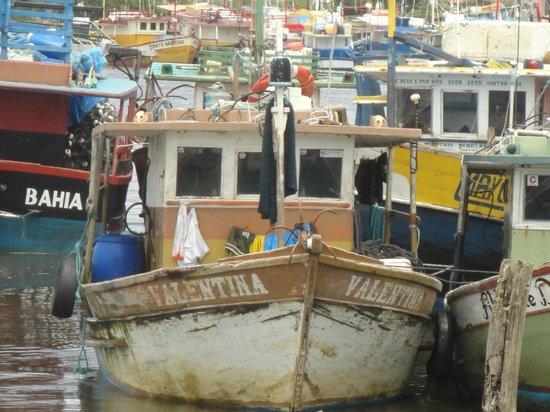 Alcobaca, BA: Barcos de Pesca  Porto de Alcobaça
