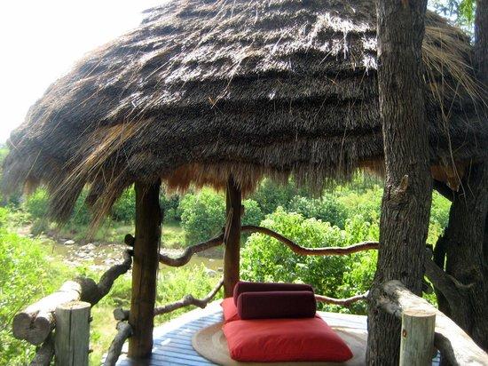 Makalali Private Game Lodge : Chill-Platform