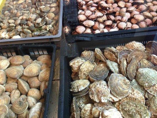 7 ème Vague Boniface : Les fruits de mer...
