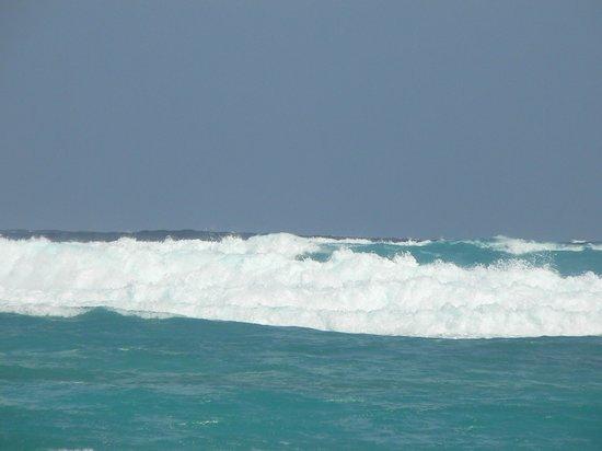 Decameron San Luis: mer agité