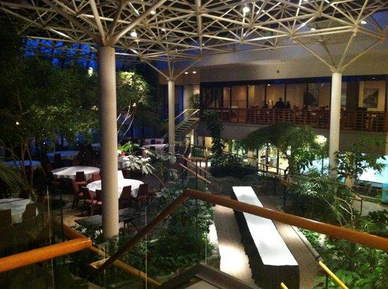 """Sheraton Hotel Newfoundland: Le hall """"boisé"""" en contrebas"""