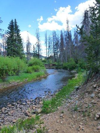 Rawah Ranch: River