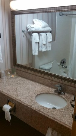 Clarion Hotel: Holiday Inn Joliet
