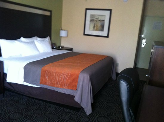 Comfort Inn - Chandler / Phoenix South : Room Decor