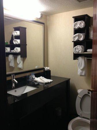 Hampton Inn Denver West / Golden: Bathroom
