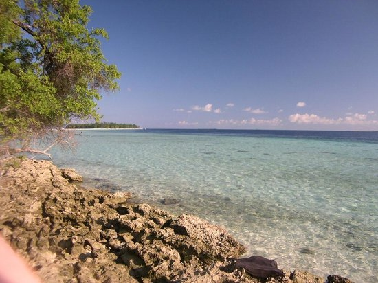 The Reef Dive Resort: il mare della piccola isola