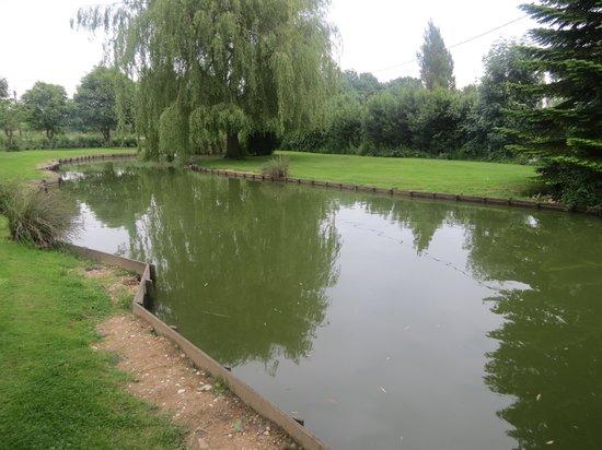 La Fermette Du Marais : le parc