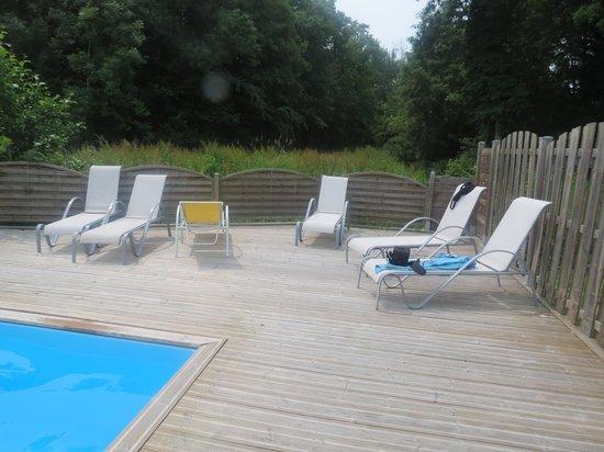 La Fermette Du Marais : la piscine