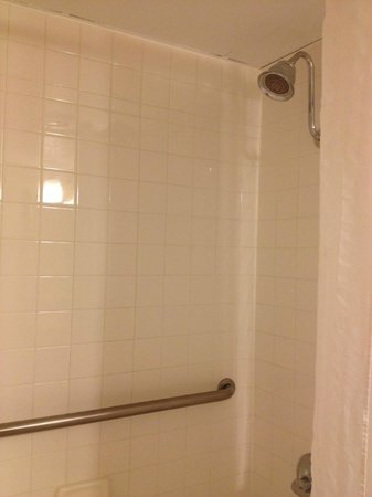 Econo Lodge Grand Junction: Shower