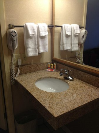 Econo Lodge Grand Junction: Bathroom