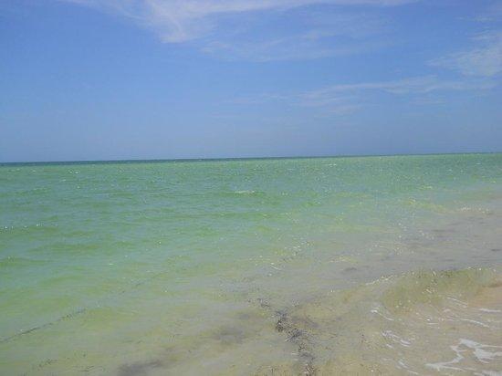 Technotel Beach: beach