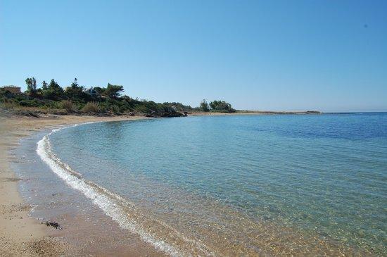 Hotel Summery: Busy day at Vatsa beach!