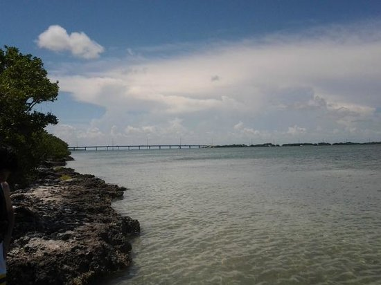 Indian Key State Historic Site : View from snorkeling site