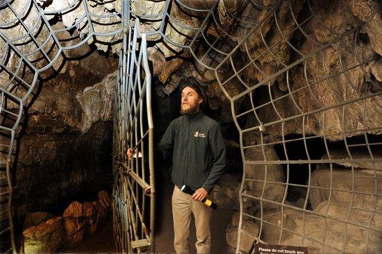 Visalia, CA: Journey underground and explore Crystal Cave in Sequoia National Park!